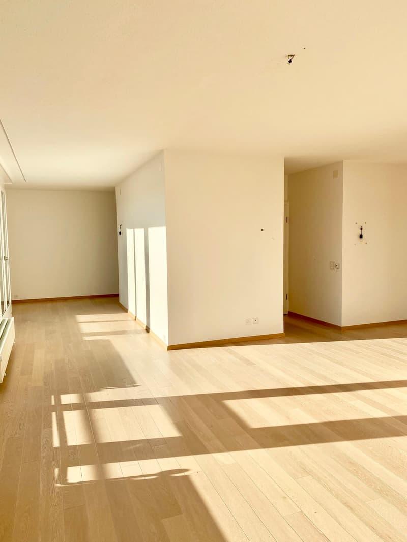 An der Engelgasse 85 in Basel eine grosse sonnige 5-Zimmer Dachwohnung mit Aussicht zu vermieten (4)