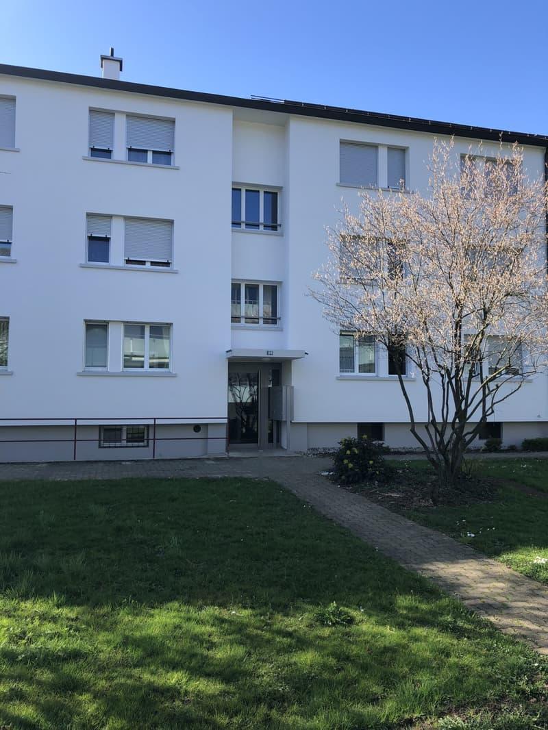3-Zimmerwohnung an zentraler Lage in Muttenz mieten