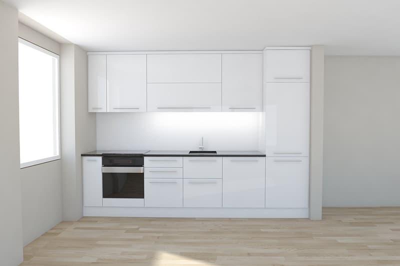moderne, offene Küche mit Glaskeramikherd, Geschirrspüler, Granitabdeckung etc.