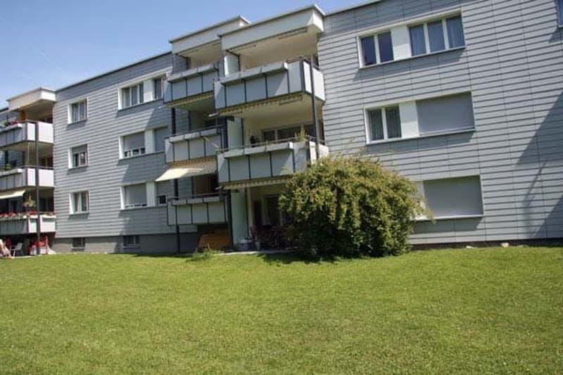 Gemütliche Wohnung in freundlicher und grüner Umgebung