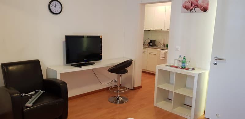 1 Raum Apartment, teilmöbliert