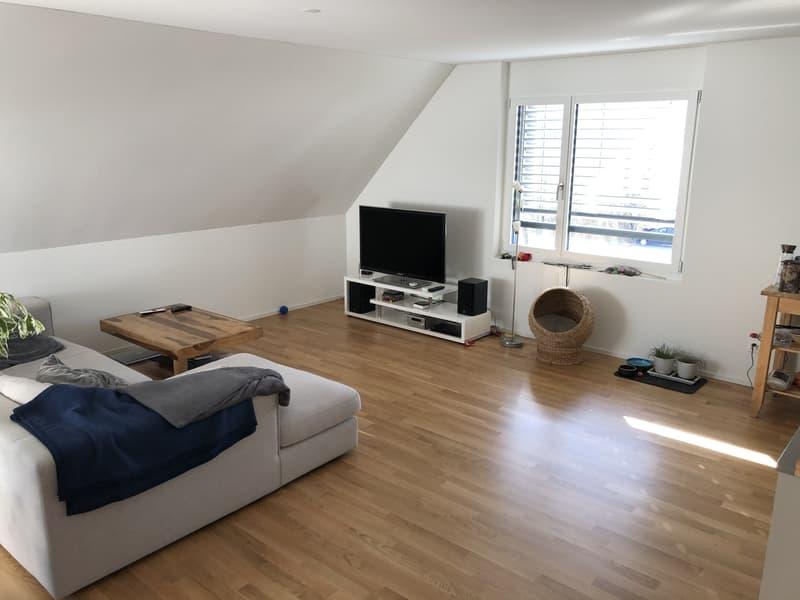 Grosszügige 4.5 Zimmer Attikawohnung 143 m2
