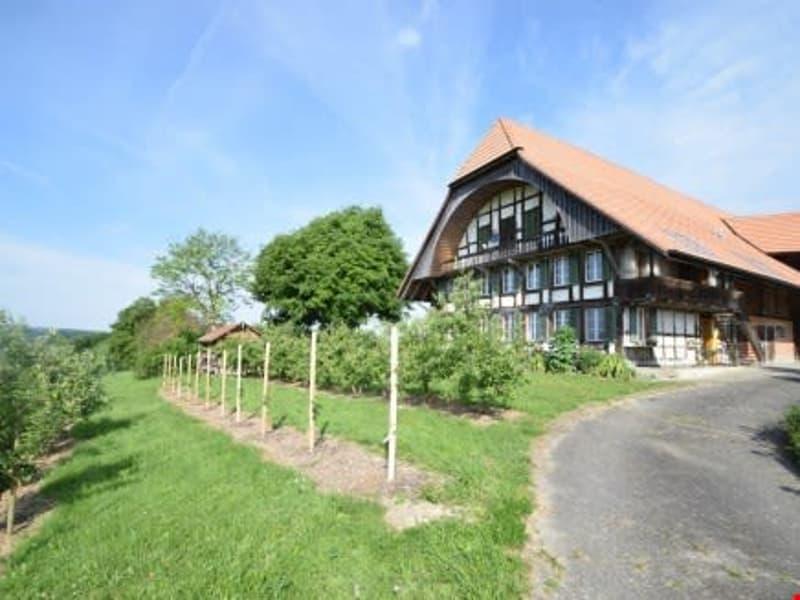 Wohnen im Grünen - Schöne Wohnung im Bauernhaus