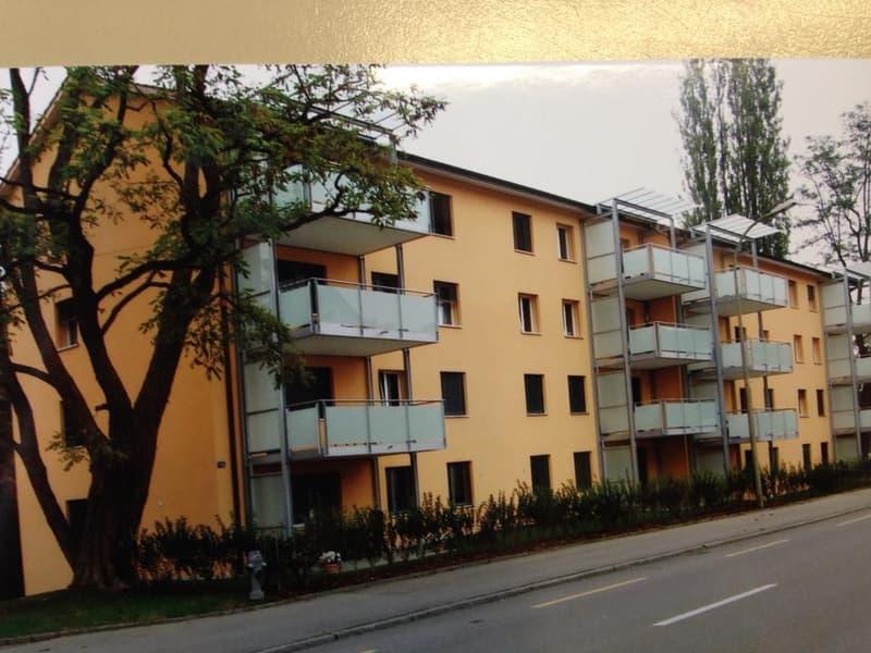 charmante 4 Zimmer Wohnung im Herzen von Kreuzlingen (4)