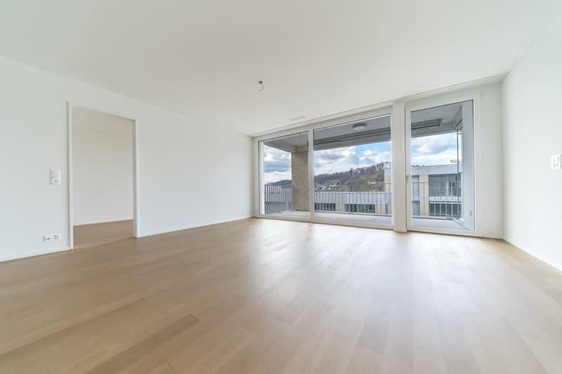 Wohnzimmer mit Ausblick auf den Suhrerchopf