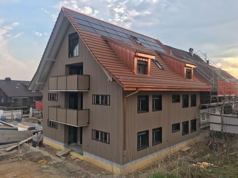 Attraktive 4.5Zi-Wohnung in 3-Familienhaus - Bezug ab 1. Juli 2020