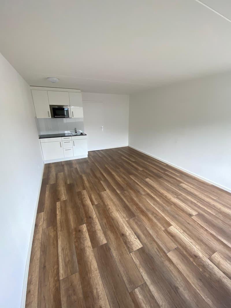 Frisch renovierte und helle 1 Zimmerwohnung!