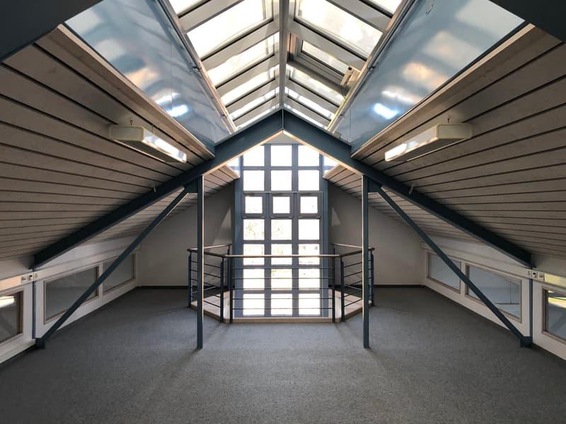 IDEAL für Start-ups! Moderne Büroflächen im Zentrum von Oetwil a.S. - BEFRISTET