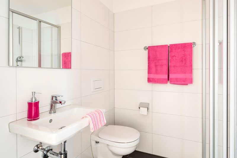 Moderne Wohnung sucht neuen Mieter! (4)