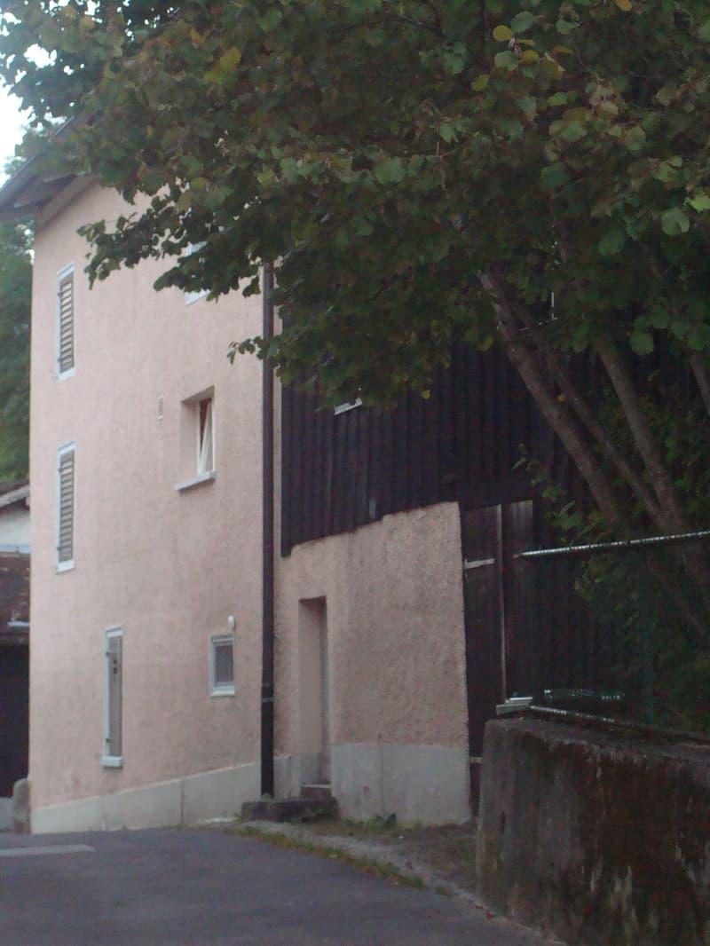 4 ½ Zimmer-Altbau-Reiheneckhaus (2)