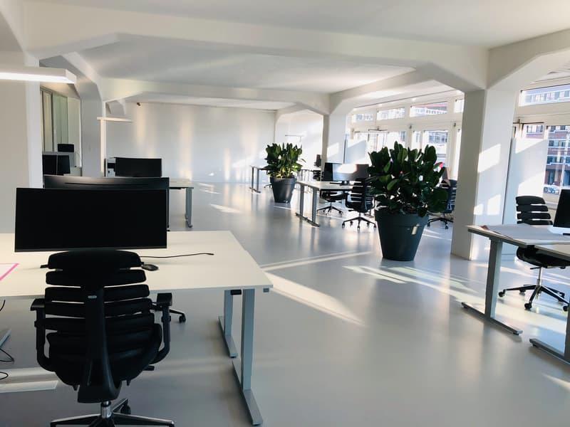 Schöne und preiswerte Büroräumlichkeiten (1)