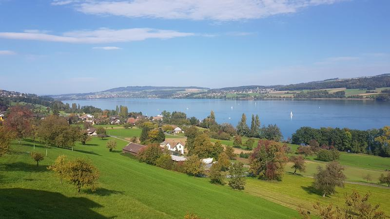 Freier Ausblick über dem See vom Balkon aus