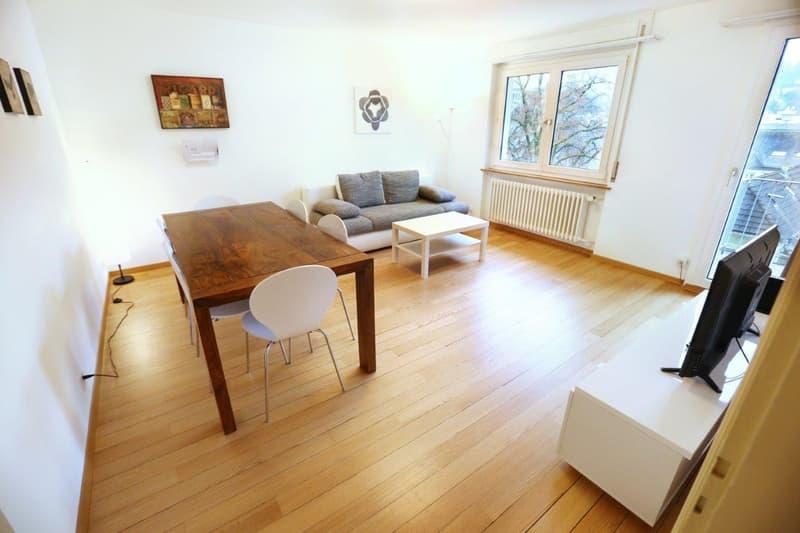 Möblierte Wohnungen 3.5 Zi - Tages-/Wochen-/Monatsbasis - Furnished Apts 2 Bdr -daily/weekly/monthly (1)