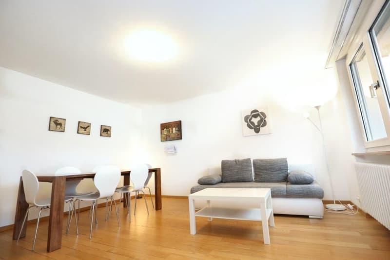 Möblierte Wohnungen 3.5 Zi - Tages-/Wochen-/Monatsbasis - Furnished Apts 2 Bdr -daily/weekly/monthly (2)