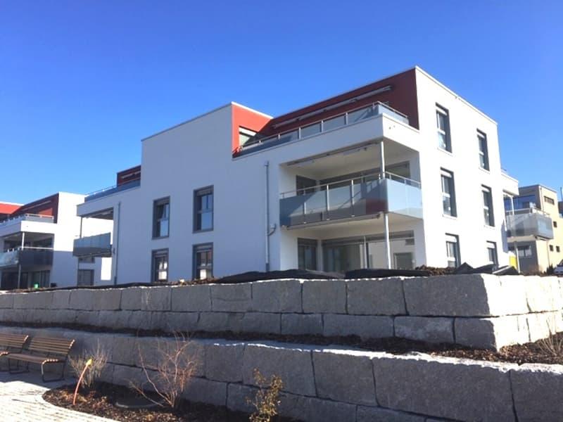 Erstvermietung - Attika-Wohnung mit top Aussicht und Abendsonne