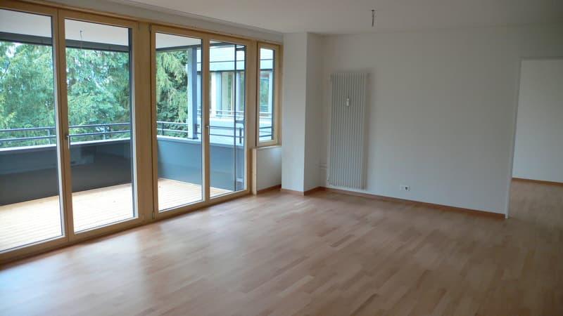 3.0-Zimmerwohnung an ruhiger Lage (1)