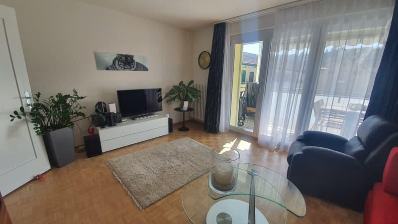 Nachmieter für sonnige 3.5 Zimmerwohnung im schönen Tösstal gesucht (1)
