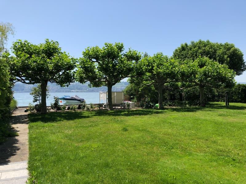 Direkt am Zürichsee - Privatstrand - eine Welt für sich