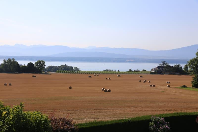 Charmante villa avec vue panoramique sur le lac, Crans-près-Céligny