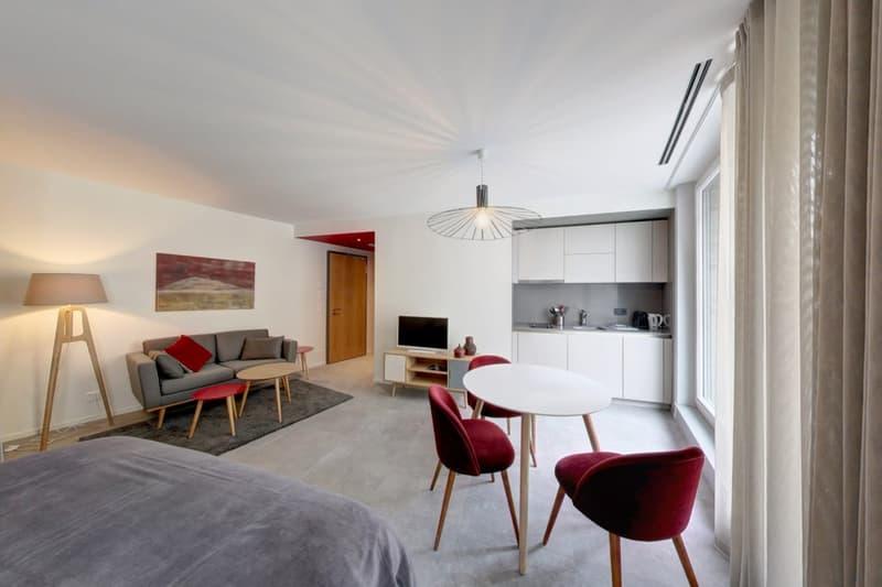 """Résidence """"Petite Cour""""    Studios conforts meublés - Aubergine"""