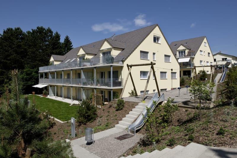 Suchen Sie eine 2.5-Zimmer-Wohnung in der Nähe des Rheins?