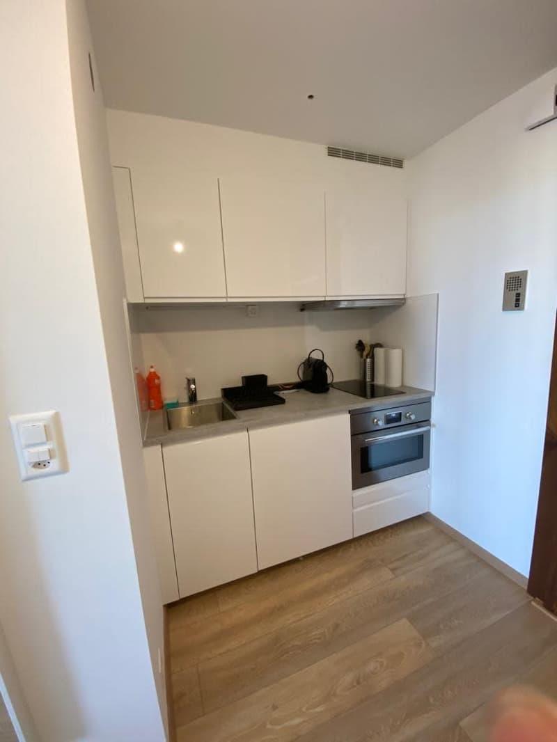 Studio tout neuf avec vue sur le Mont-Blanc au 9ème étage d'une résidence au calme au centre-ville ! (2)