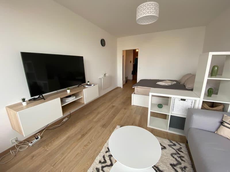 Studio tout neuf avec vue sur le Mont-Blanc au 9ème étage d'une résidence au calme au centre-ville ! (3)