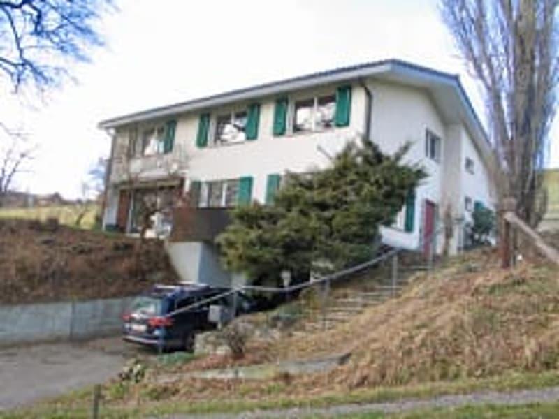 Freistehende 7.5 Zi Einfamilienhaus für Familie (1)