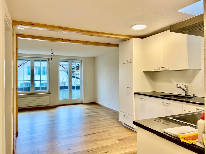 Traumküche mit Blick ins Wohnzimmer und Dachfenster