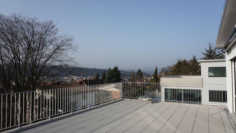 Attraktives Doppeleinfamilienhaus mit Fernsicht am Rebbergweg 4a, 5212 Hausen AG (3)