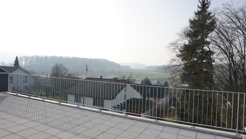 Attraktives Doppeleinfamilienhaus mit Fernsicht am Rebbergweg 4a, 5212 Hausen AG (2)