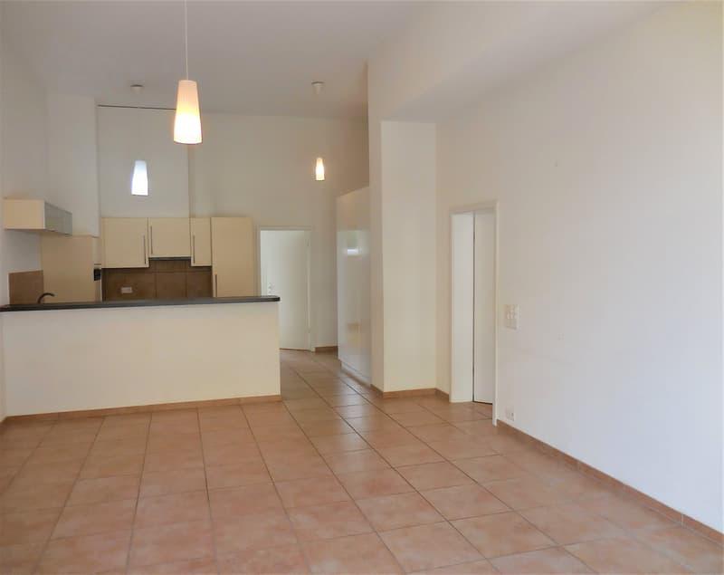 Superbe appartement proche du lac et centre-ville, 4,5 pces ,  103m2,  terrasse 45m2