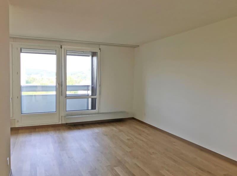 Helle, renovierte Wohnung mit grossem Balkon (2)