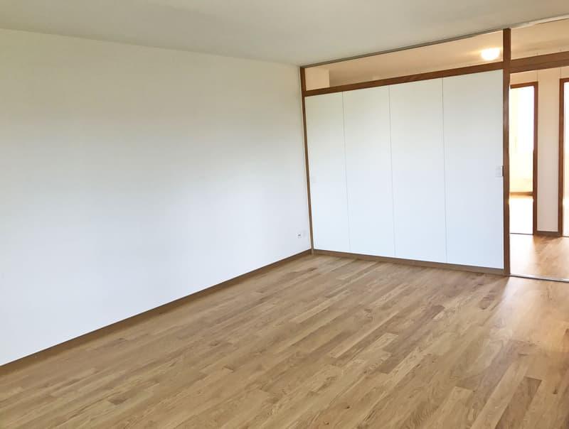 Helle, renovierte Wohnung mit grossem Balkon (3)