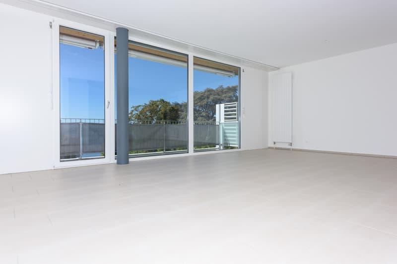 Spacieux logement (3)