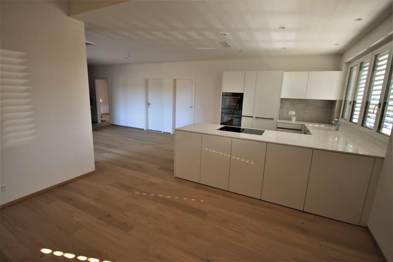 Moderne, attraktive 3 1/2 - Zimmer Eigentumswohnung im Dachgeschoss mit Estrich (2)