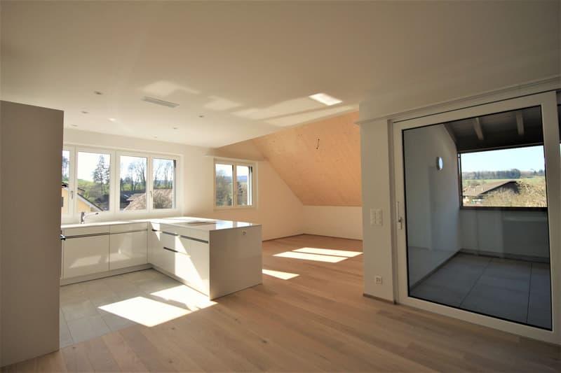 Moderne, attraktive 3 1/2 - Zimmer Eigentumswohnung im Dachgeschoss mit Estrich (3)