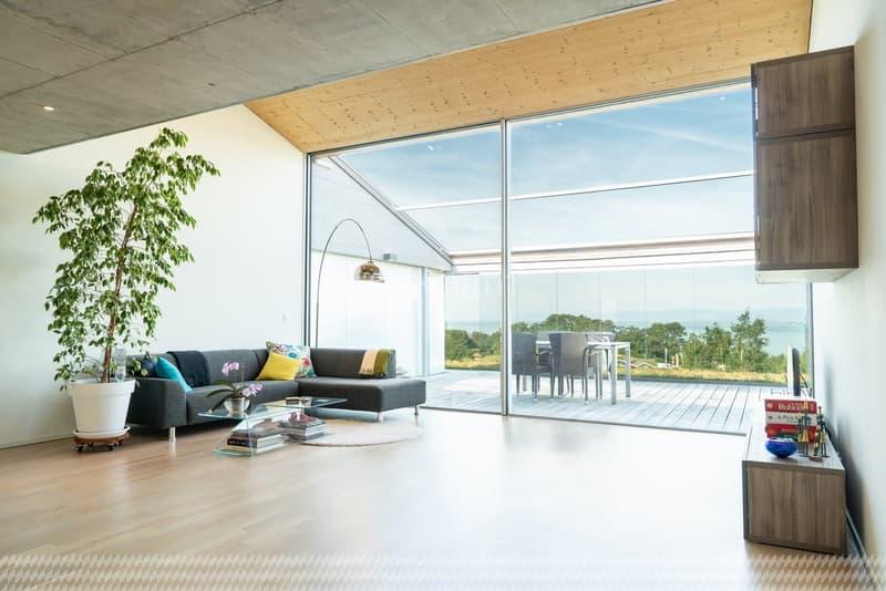 Duplex de 187 m2 PPE Vue panoramique sur le lac Léman (2)