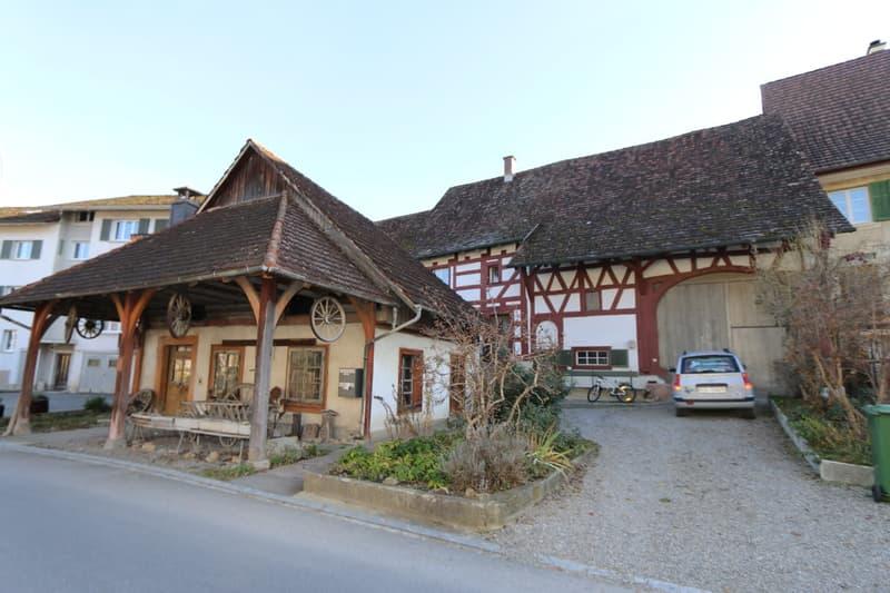 Renoviertes 2 Familien-Bauernhaus mit grosser Scheune