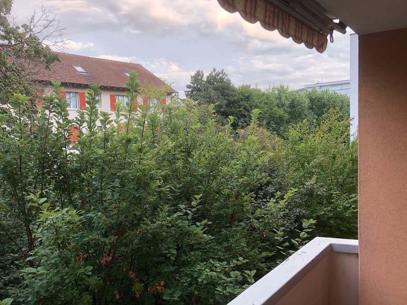 Grosse 3½ Zimmer-Wohnung mit Blick ins Grüne zentral in Pratteln (1)