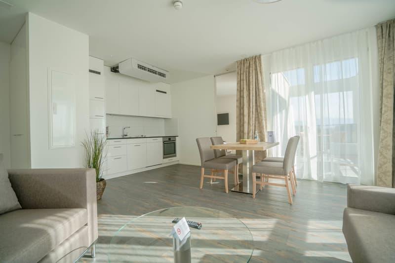 Attika Apartments - Wohnen wie im Penthouse (2)