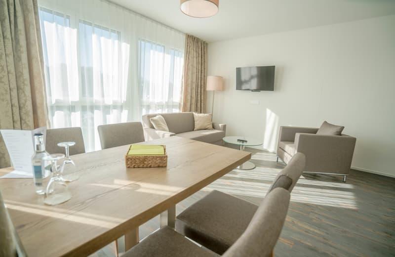Attika Apartments - Wohnen wie im Penthouse (4)