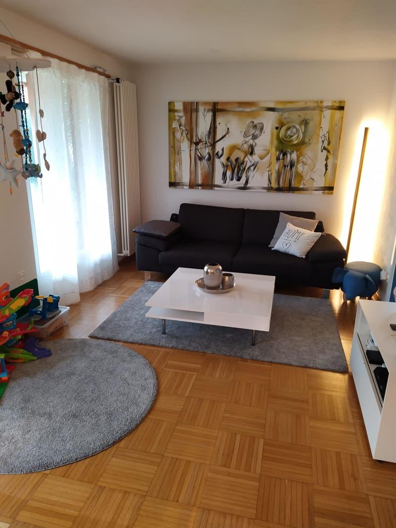 5 1/2-Zimmer Einfamilienhaus an ruhiger Südwesthanglage zu vermieten (2)