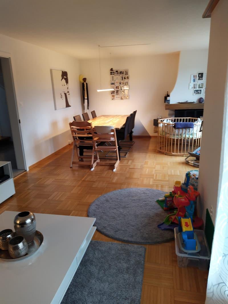 5 1/2-Zimmer Einfamilienhaus an ruhiger Südwesthanglage zu vermieten (3)