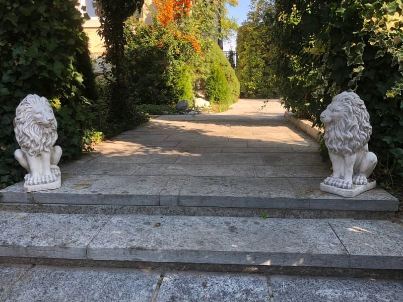 Villa Windegg (3)