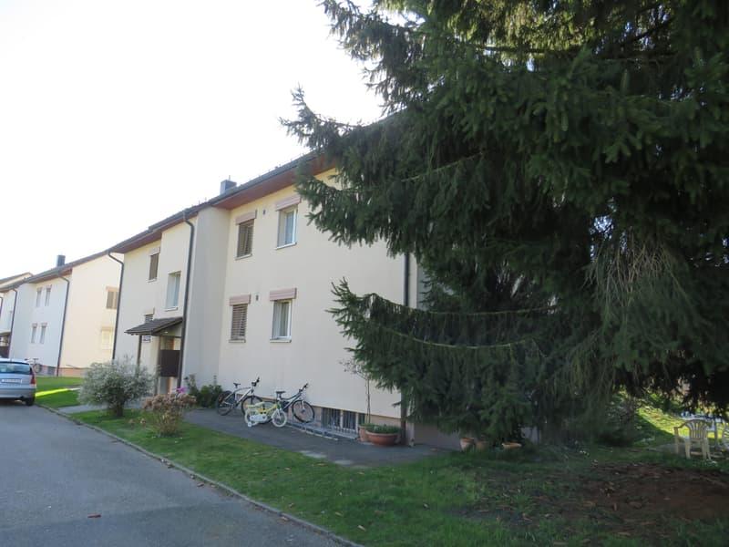 zu vermieten 4-Zimmerwohnung im Parterre in Zofingen (3)