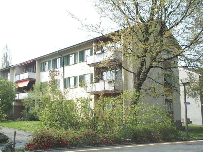 Ruhiges Wohnen in Thalwil