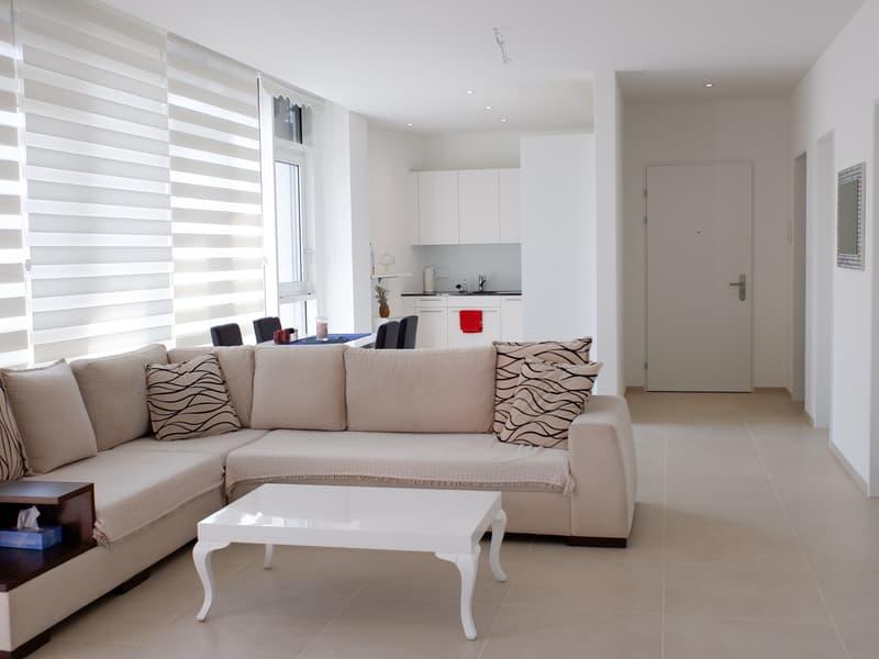 Neuwertige Wohnung an zentraler Lage