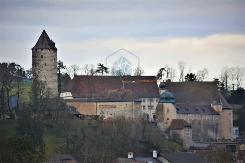 Vue Château depuis la parcelle