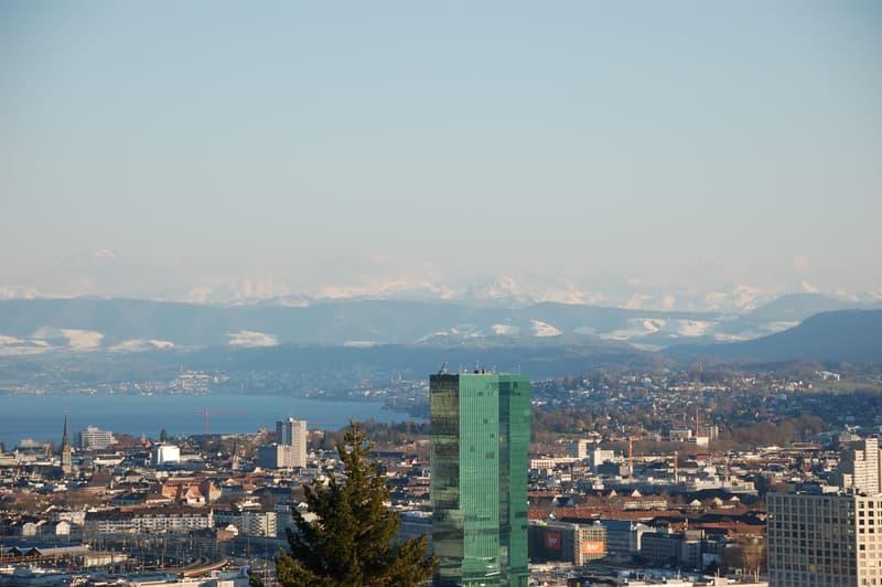 Terrassenwohnung mit Aussicht über Zürich, See und Alpen (2)
